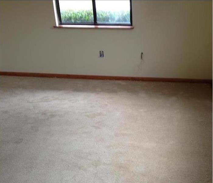 Mold Damage – Coon Rapids Apartment After