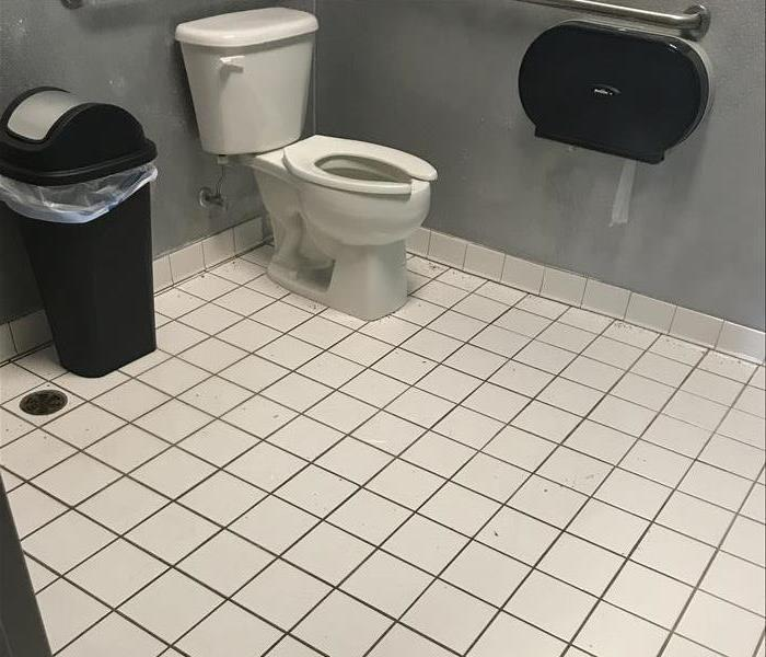 A Clogged Restroom in a Coon Rapids Office Complex