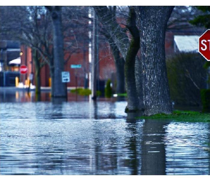 Storm Damage SERVPRO's Restoration Process for Your Floods Damaged Your New Brighton Residence