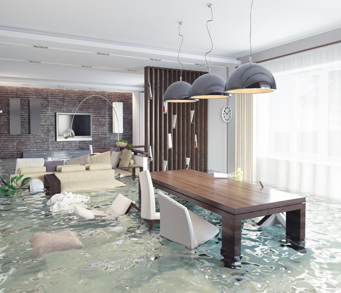 Water Damage How a Coon Rapids Water Damage Restoration Company Can Help You