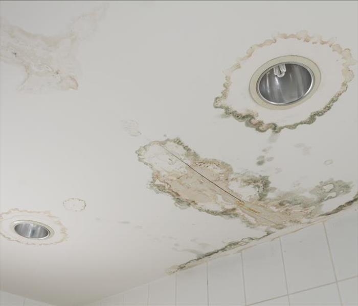 Water Damage In The Fridley Area: Call Us For Water Removal Damage