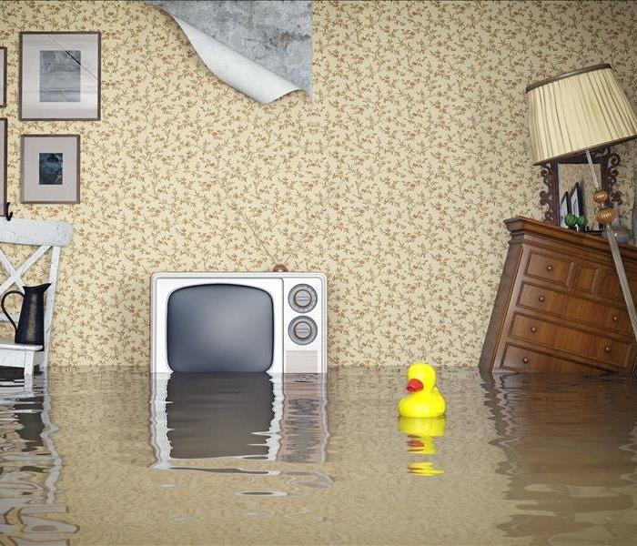Water Damage Water Damage In Blaine - Reasons to Call in the Pros