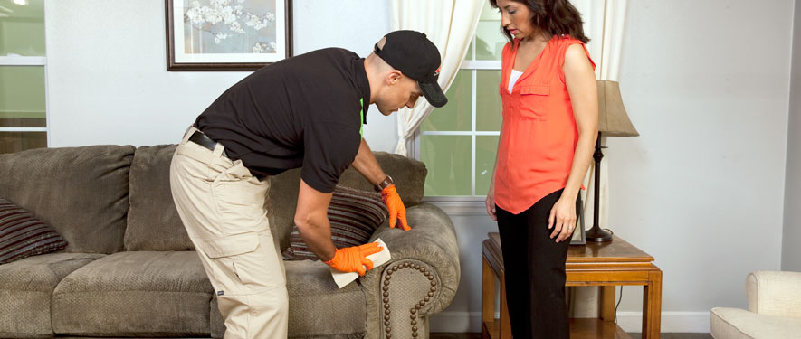 Coon Rapids, MN carpet upholstery cleaning
